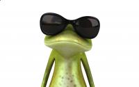 Kermit (Joanna Bożek) Avatar